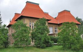 Bačinova vila snovou střechou v roce 2010.